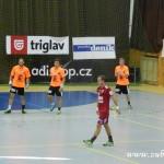 Dukla zubri20130038