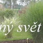 Kouzelný svět trav