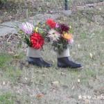 Kouzelný svět trav  20130067