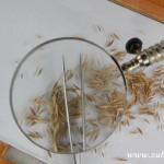 Kouzelný svět trav II 20130039