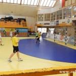 Mikulášský turnaj v házené mladších žáků HC Zubří 2013 00015