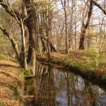 Struha za rybníkem - Blažena Slováková