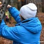 Stromeček pro zvířátka 2013 00016