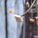 Stromeček pro zvířátka 2013 00035