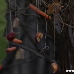 Stromeček pro zvířátka 2013 00036