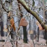 Stromeček pro zvířátka 2013 00055