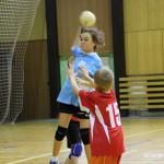 Turnaj Minižákyň na vsetině  2014 VZ 0022