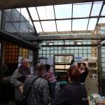 Oseva zahradkářství ve  skleníku  2014  0048