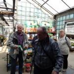 Oseva zahradkářství ve  skleníku  2014  0050