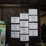 Oseva zahradkářství ve  skleníku  2014  0056