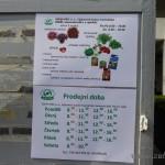 Oseva zahradkářství ve  skleníku  2014  0071