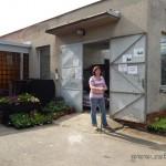 Oseva zahradkářství ve  skleníku  2014  0072