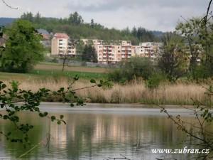 Pohled na sídliště od rybníka