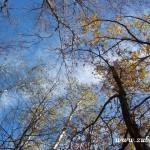 Valchařová Michaela Zubří květen  2014 0013