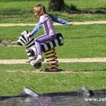 Zkrocená zebra