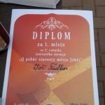 2. tenisový turnaj O POHÁR STAROSTY MĚSTA ZUBŘÍ 2014 dvouhra 0057