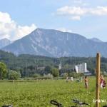 Velký úspěch mládeže HC Zubří v Klagenfurtu 2014  0051