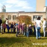 Kouzelný svět trav III v Osevě Zubří 2014DSCN3833