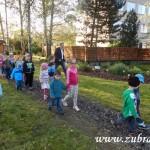 Kouzelný svět trav III v Osevě Zubří 2014DSCN3855