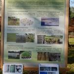 Kouzelný svět trav III v Osevě Zubří 2014DSCN3886
