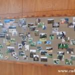 Kouzelný svět trav III v Osevě Zubří 2014DSCN3899