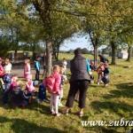 Kouzelný svět trav III v Osevě Zubří 2014DSCN3902