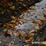 Podzim 2014 v Zubří  0002