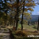 Podzim 2014 v Zubří  0026
