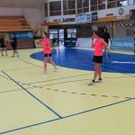Sportovní hala žila badmintonem 2014 0081