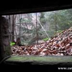 Výhled z bunkru na sever