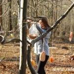 Zdobení stromečku v lipůvce 2014 0010