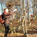 Zdobení stromečku v lipůvce 2014 0029