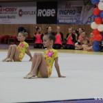 Gymnastika  Zubří 2015 0003