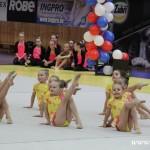 Gymnastika  Zubří 2015 0007