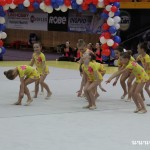 Gymnastika  Zubří 2015 0009