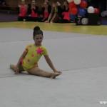 Gymnastika  Zubří 2015 0018