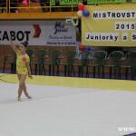 Gymnastika  Zubří 2015 0021