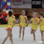 Gymnastika  Zubří 2015 0025