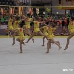Gymnastika  Zubří 2015 0031