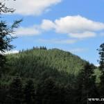 Hodorfský kopec z Krátké