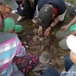 Zuberský tábor ve Stříteži nad Bečvou 2015 TROSEČNÍCI taborovy 0185