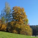 Fotky pro radost ze Zubří podzim 20150019