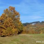 Fotky pro radost ze Zubří podzim 20150024