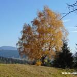Fotky pro radost ze Zubří podzim 20150038