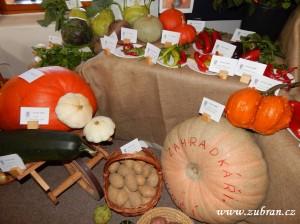Výstava ovoce a zeleniny zahradkaři 2015 v Zubří0044
