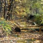 Starozuberský potok