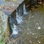 Zuberský potok
