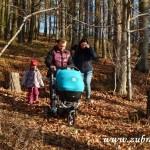 Zdobení vánočního stromečku pro zvířátka v Lipůvce 20160003
