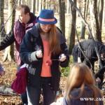 Zdobení vánočního stromečku pro zvířátka v Lipůvce 20160025