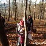 Zdobení vánočního stromečku pro zvířátka v Lipůvce 20160029